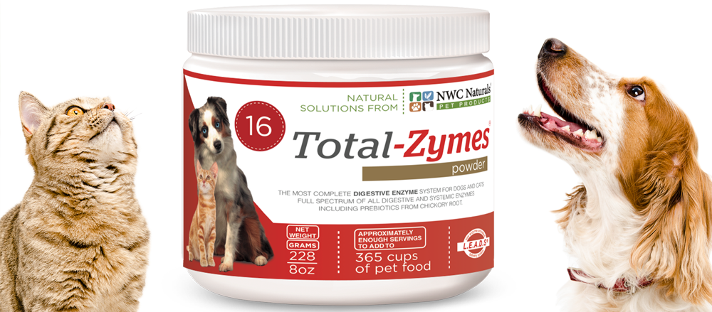 enzymes for pets